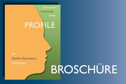 Informationen über unsere Profilfächer